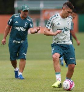 O elenco do Verdão fez trabalho em campo reduzido e treinou finalizações na manhã deste sábado (27). (Cesar Greco/Ag. Palmeiras/Divulgação)
