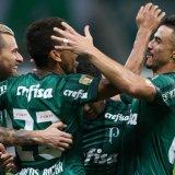 Palmeiras goleia Novorizontino por 5 a 0 e avança para as semifinais
