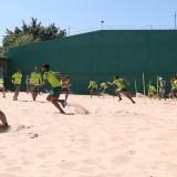 Treino: Palmeiras aprimora parte física antes de atividade técnica no gramado