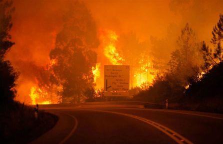 Resultado de imagem para Incêndio florestal deixa 57 mortos e 60 feridos em Portugal