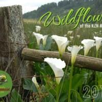 Wildflower Calendar 2016