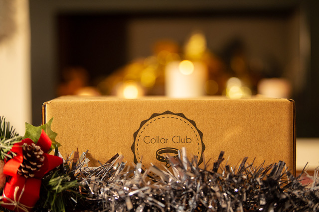 Win a Collar Club Box For Your Dog | Giveway