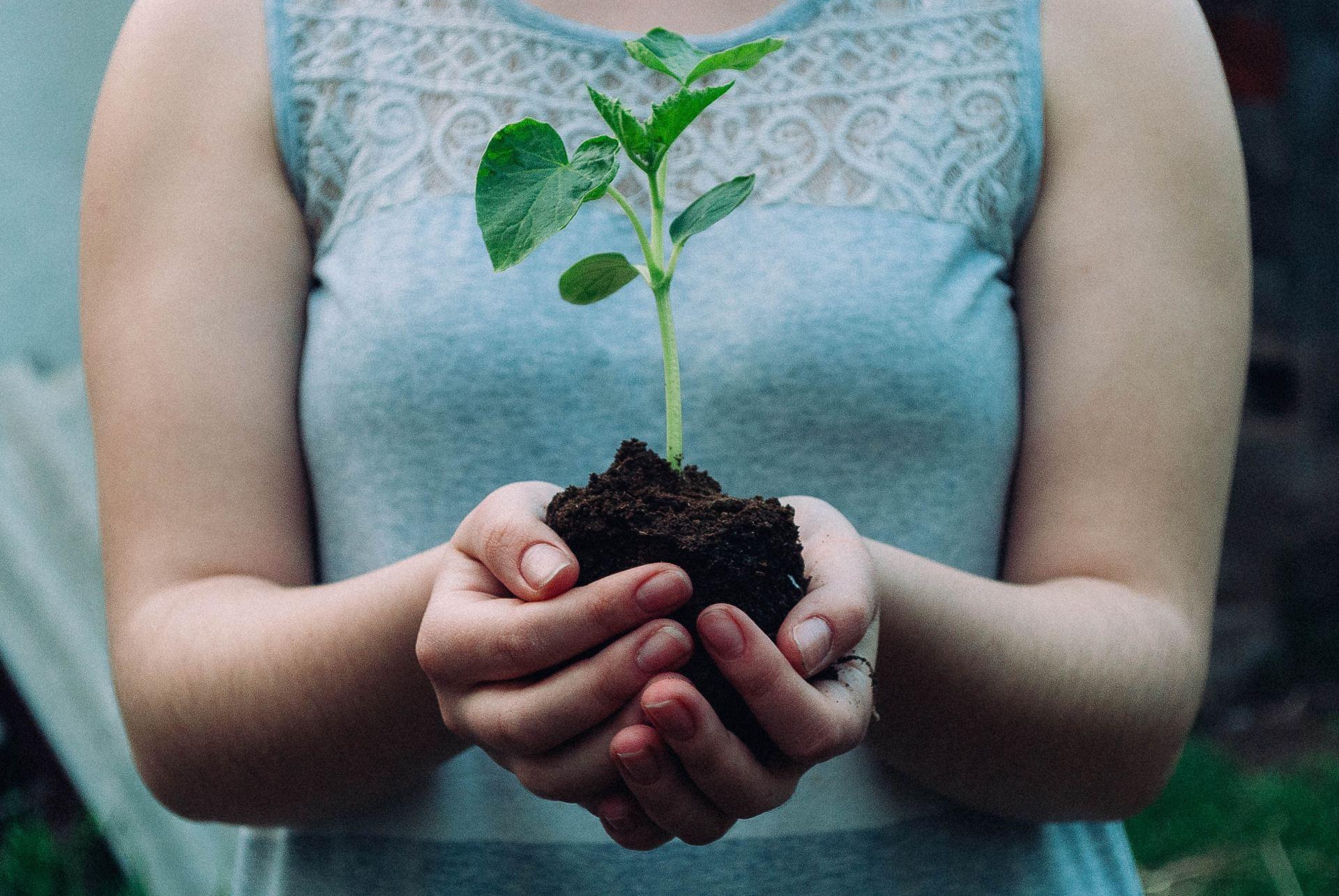 Win a 2Handy Eco-Friendly Bundle   Giveaway