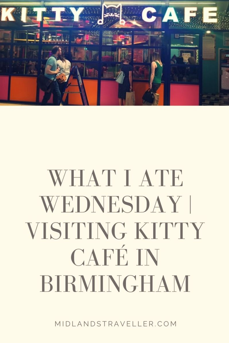 What I Ate Wednesday _ Visiting kitty Café in Birmingham