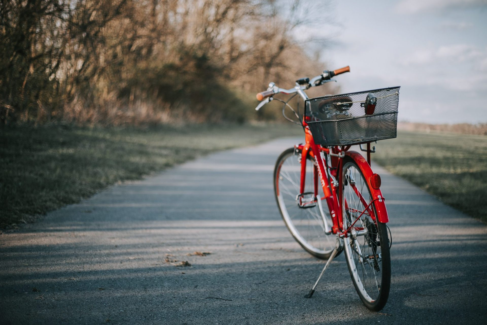 Protecting Your Bicycle | Keep Your Eco-Friendly Ride Safe