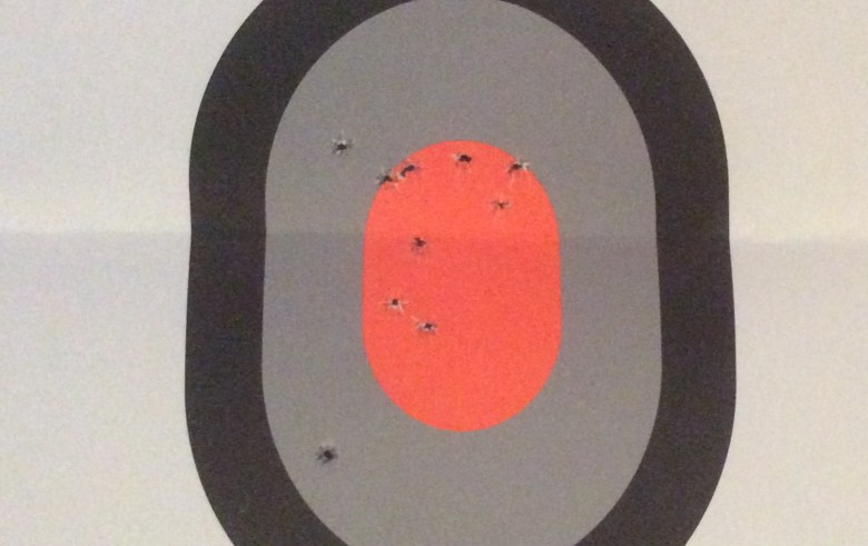 Eight Bulls-Eyes by Mid-Life Blogger