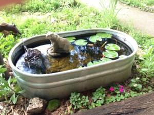 Mini Garden Pond Water Feature