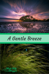 A Gentle Breeze