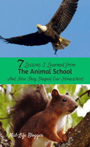 7 Lessons I Learned from The Animal School