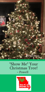 """Show Me"" Your Christmas Tree"