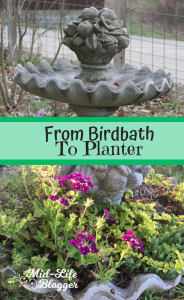 From Birdbath to Planter