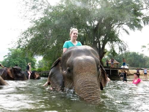 asian-elephant-preserve-thailand
