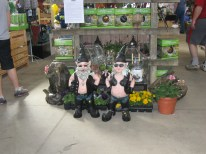 March 17th: Biker gnomes beg for a buyer at the Indianapolis Flower & Patio Show.
