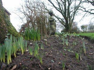 More green shoots