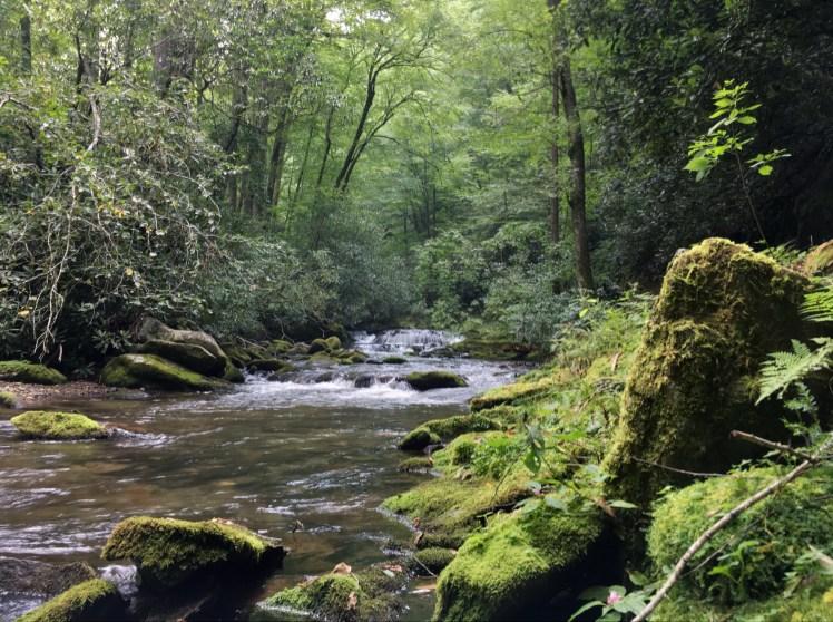 The beauty of Deep Creek