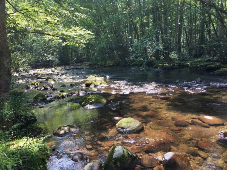 A flatter section of Deep Creek