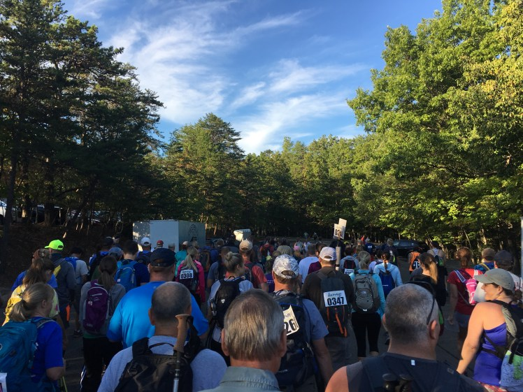 Lots of runners at Reach the Peaks