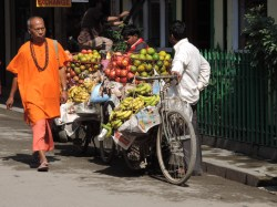 Street hawkers selling fruit