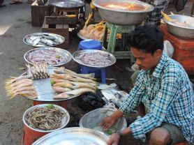A variety of food is available on the streets.