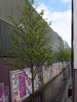 Part of the Peace Walls in Belfast, they have stood longer than the Berlin Wall