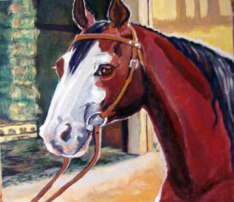 Brown hose with white face wearing a bridle.