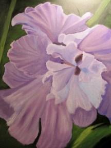 Large purple iris flower.