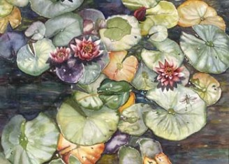 Multicolored lily pads in a pool.