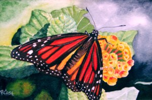 Orange and black monarch butterfly on yellow flower.