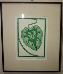 Cyclamen Leaf by Jane Cloutier