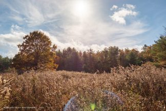 A dramatic field in autumn. Mattapoisett Massachusetts