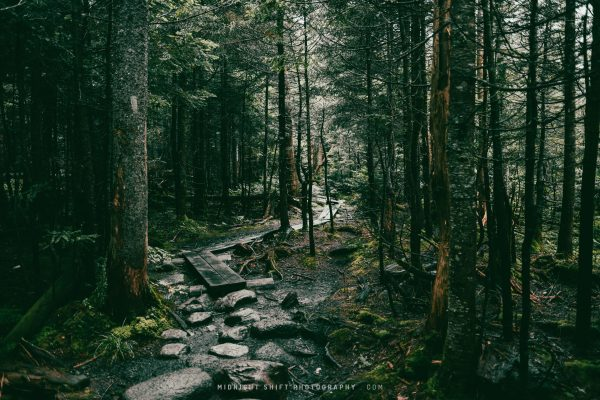 A moody hike on the trails to Lonsesome Lake in New Hampshire
