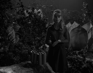 lost-in-space-attack-of-the-monster-plants