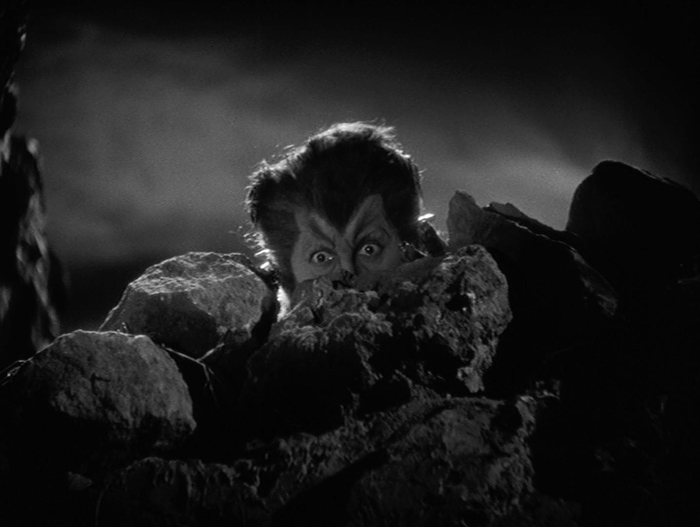 Werewolf-of-London-1935.jpg