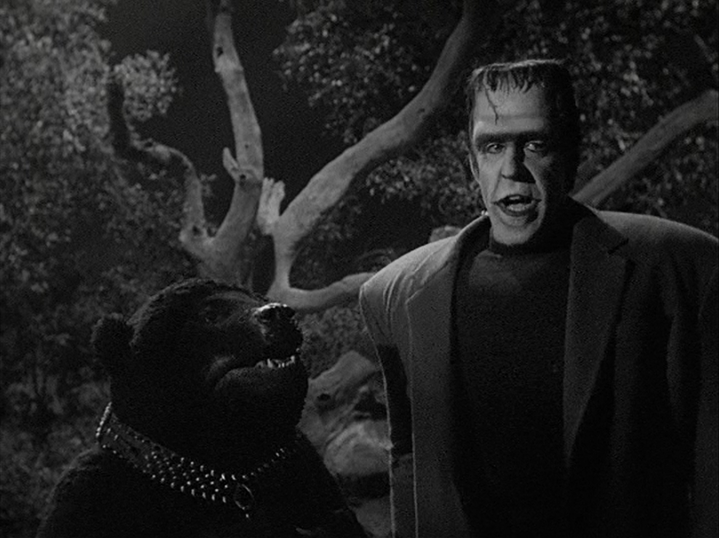 Image result for the munsters herman's child psychology