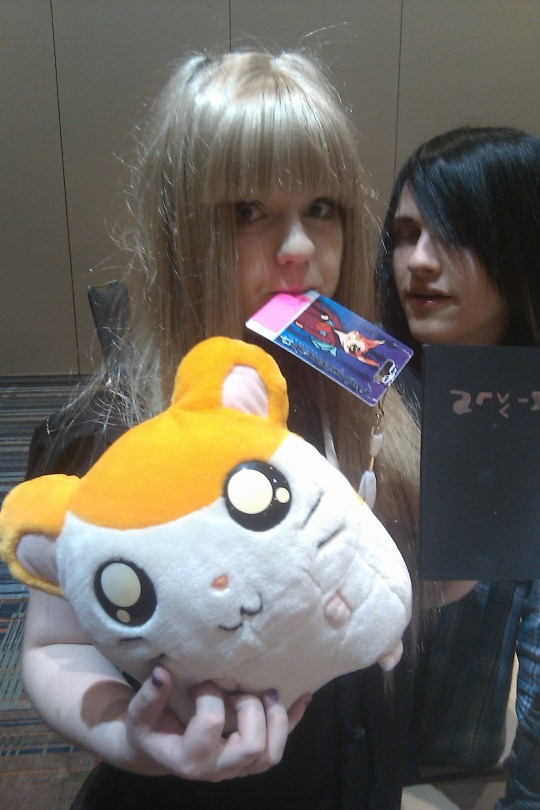 DAT HAMTARO (That's not me, though~)