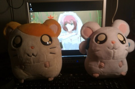 Hamtaro and Bijou look so cute together~
