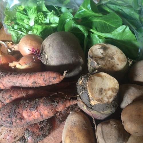 veg bag contents - spinach, salad leaves, onions, swede, potatoes, beetroot, carrots - midorigreen.co.uk