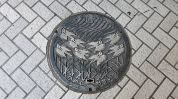 even their manholes for waterworks are a work of art!