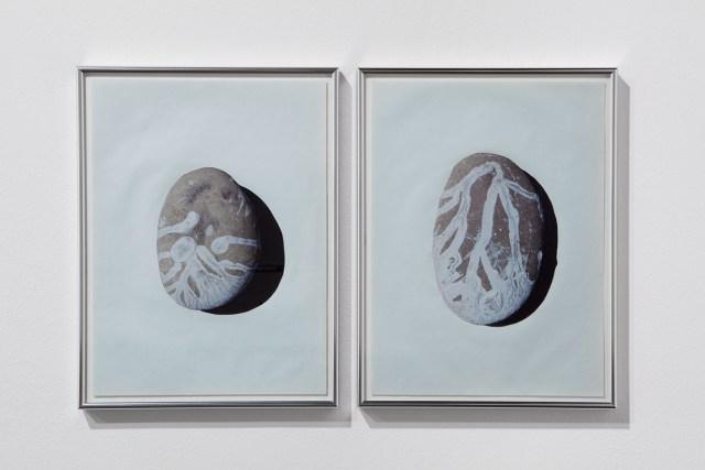 Worn contingencies and their shadows (on a Riffian beach), 2013. Framed photo collages (XXV-XXVI). 2 parts, each 17 ¾ x 13 ¾ inches. Edition of 1/3 + 1AP; 1/3.