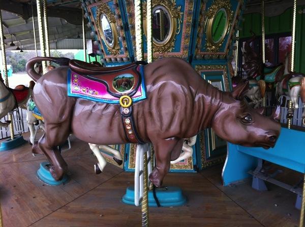 Chance Park Carousel 02
