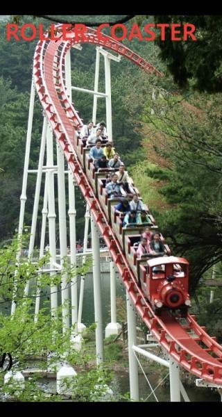 Adult Roller Coaster