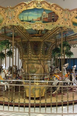 Bertazzon 6.5 Meter Carousel