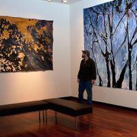 Artist Todd Mrozinski talking about his work at Gallerie M.