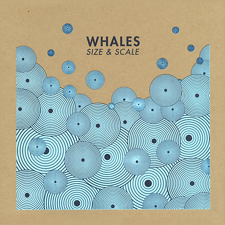 whales_size-and-scale