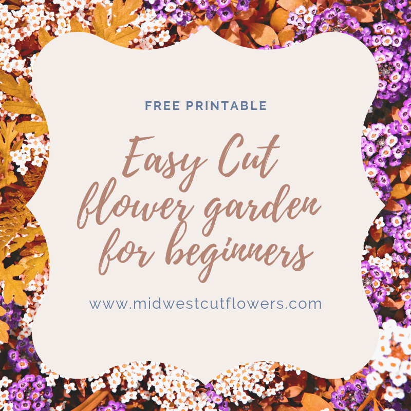 Easy Cut Flower Garden For Beginners With Free Printable Plan