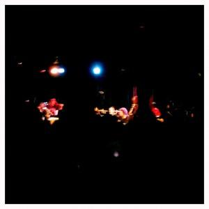 Tributosaurus concert