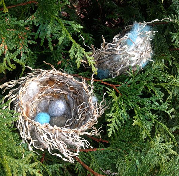 Nest Class_Spur