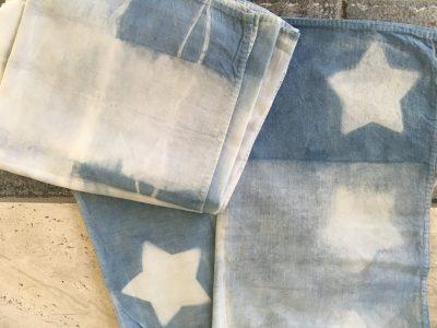 Kid's Indigo – Creating Blue Bandanas with Kipp Inglis