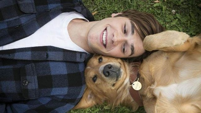 Dog Days of Summer with Mr. Ringenberg: A Dog's Purpose