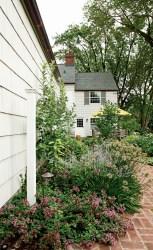 Outdoors_Garden_Floral-Walkway